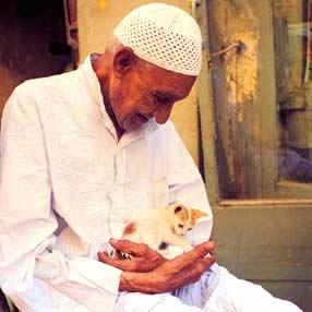 Un gatito en el regazo de un anciano en Darb al-Ahmar