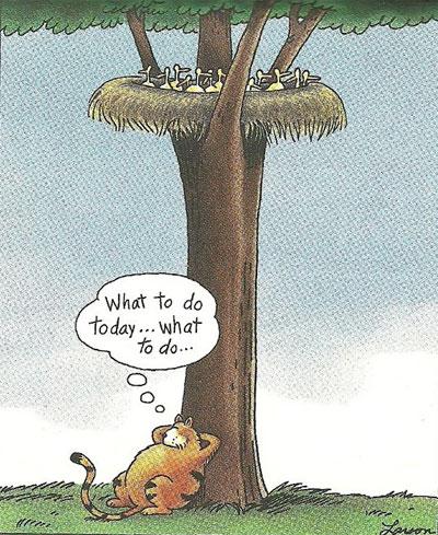 ¿Qué voy a hacer hoy… ¿Qué voy…?