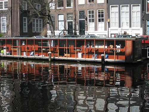 catboat_3