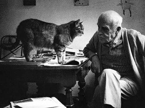Diego Giacometti y un gato