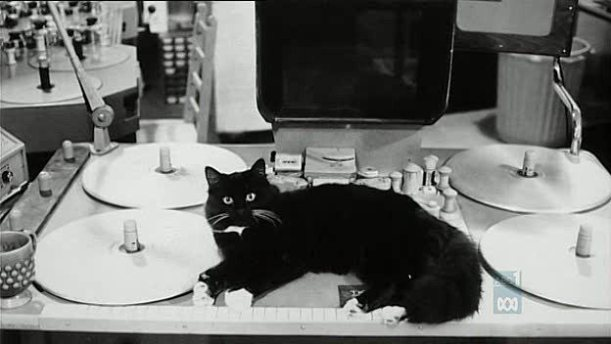 Gato encima de una moviola del documental Stanley Kubrick's Boxes
