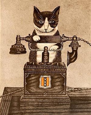 Gato teléfono