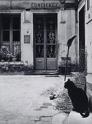 El gato de la portera (Calle de Tournon)