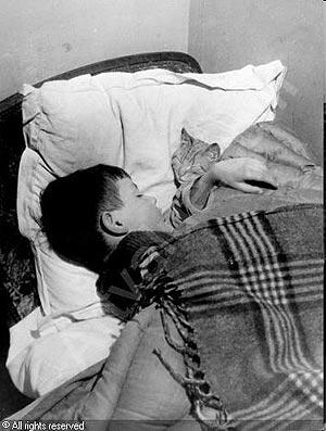 Vincent y el gato (1910)