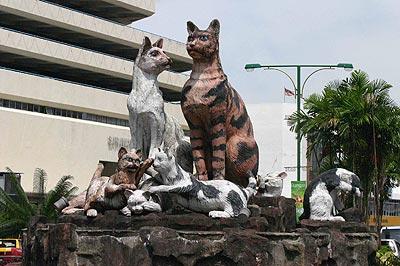 Conjunto gatuno en una calle de Kuching