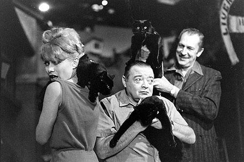 Joyce Jameson, Peter Lorre, Vincent Price con un gato negro