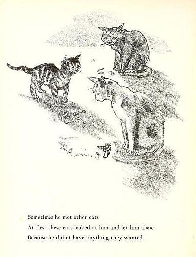 A veces se cruzaba con otros gatos. Al principio no le hacían caso porque no tenía nada que les interesase.