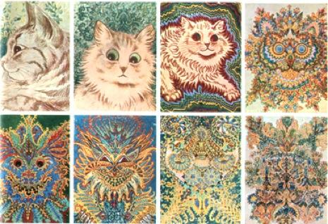 Serie de 8 dibujos, según el Dr. Maclay