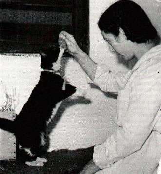 Simon en cuarentena