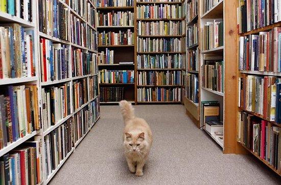 Fred, de Columbia Books, Columbia, Misuri