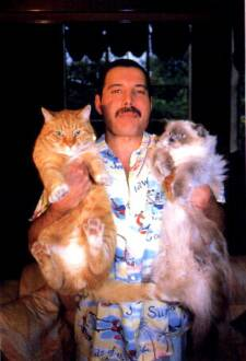 Freddie Mercury, Oscar y Tiffany