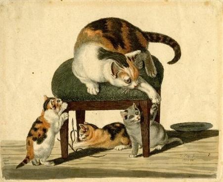 Gatos jugando en un taburete