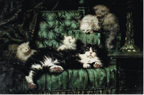 Gatos en sofá