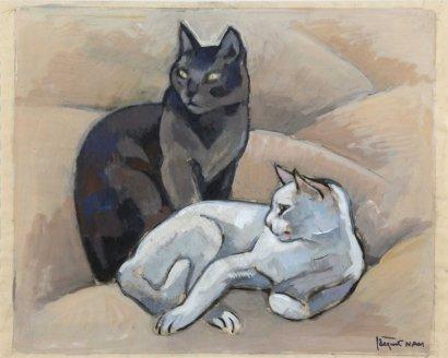 Gato blanco y gato negro