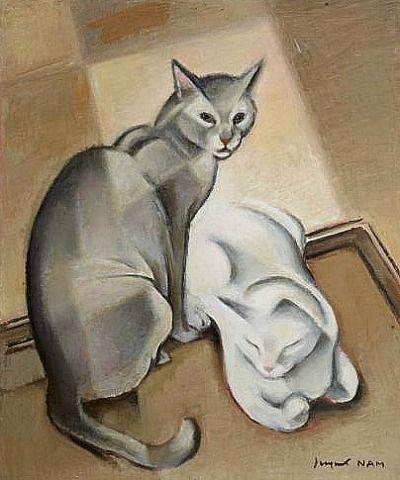 Gato gris y gato blanco