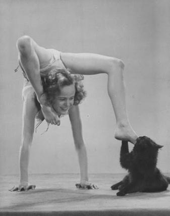 Blackie mordisqueando el pie de una contorsionista