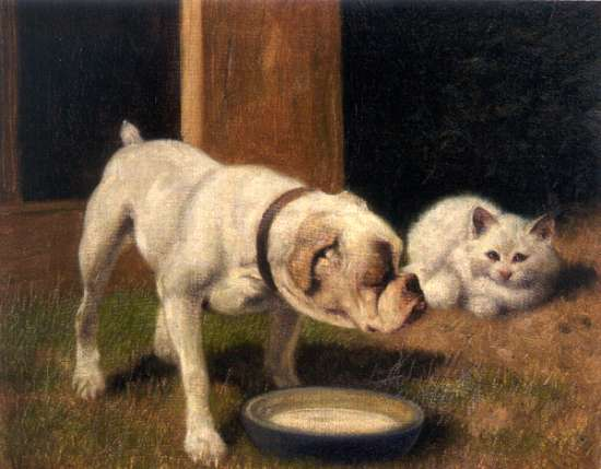 Arthur_Heyer_-_A_Bulldog_with_White_Persian_Cat