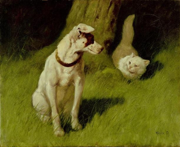 white-persian-cat-and-jack-russell-arthur-heyer