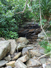 Cascada Maaree, donde unos niños avistaron a un gato iriomote el 5 de mayo de 1965