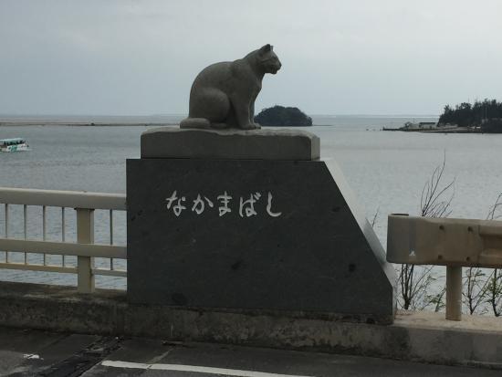 Otra estatua dedicada al gato iriomote