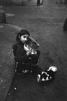 Roma 1981