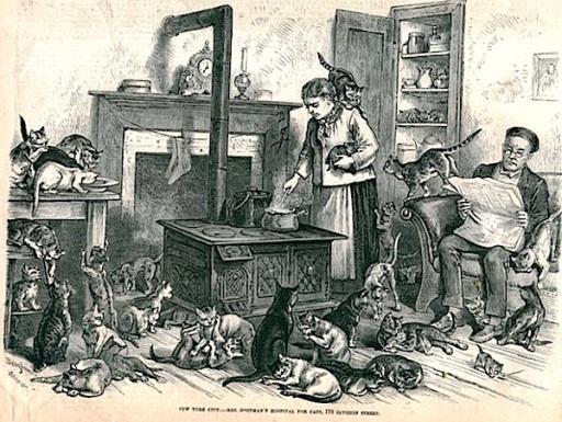 Ilustración de 1875 describiendo a Rosalie Goodman (capitulo 8)