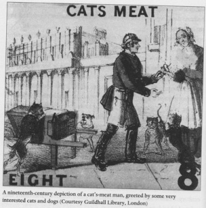 Dibujo del siglo XIX de un cat's meat man