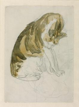 Cat c.1904-8 Gwen John 1876-1939 Purchased 1940 http://www.tate.org.uk/art/work/N05155