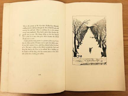 Ilustración realizada por el autor
