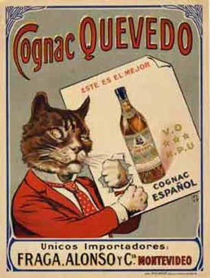 bebidas-alcoholicas-uruguay