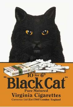 tabaco-cigarrillos-black-cat-2
